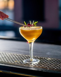 Bartender puts a sprig of rosemary on the finished cocktail.Bartender is preparing a cocktail for serving.Finishing a Cocktail. Mixology