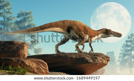 Baryonyx was a large carnivorous spinosaurid theropod dinosaur that lived in Cretaceous era Europe. It likely at fish and was semi-aquatic. Depicted on a cliff in front of the full moon. 3D Rendering