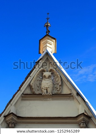 Bas-relief of a big owl under the roof of the building. Petrogradsky district, St. Petersburg, residential building. Built in 1905. Kuibyshev street