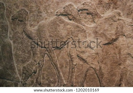 Bas relief of camels in a row roughly carved in stone - Egyptian antiquity - background #1202010169