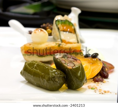 Basil pesto marinated tofu wrapped in green zucchini. Served with baby carrot, white turnip, lupini beans, and sauteed baby bok choy. - stock photo