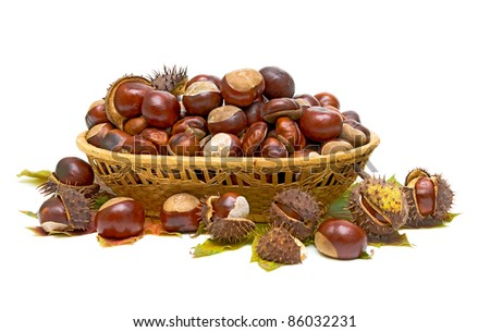 basket full of chestnuts and autumnal leaves on a white background