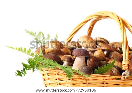 Basket full of different mushrooms isolated on a white background