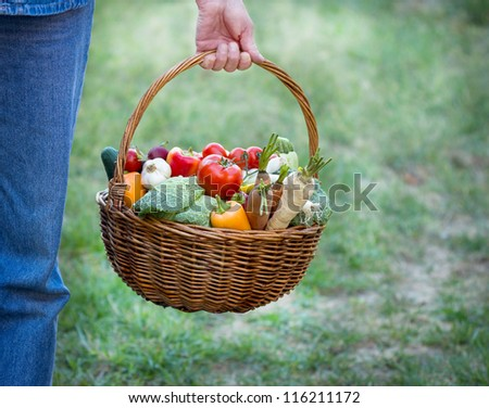 Basket full of fresh vegetables