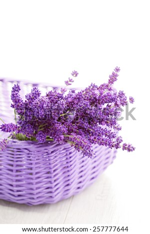 basket full of lavende - flowers and plants #257777644