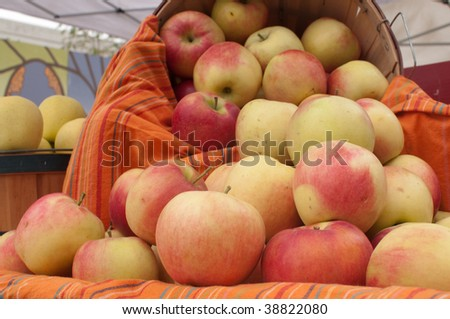 Basket of Apples at the Saturday Market in Boise, Idaho
