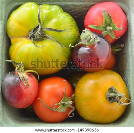 Basket of colorful heirloom tomatoes in square format