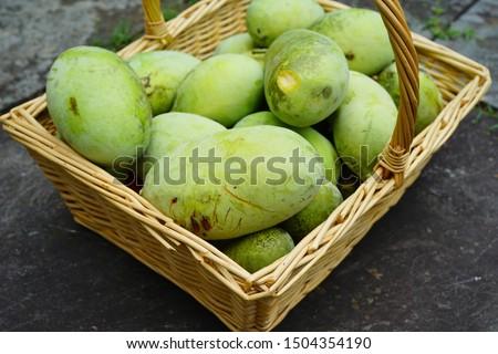 Basket of common pawpaw fruit (asimina triloba), also called custard apple Stock photo ©