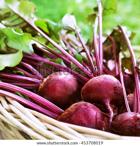 Basket of fresh harvested beetroots, beets with leaves