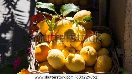 basket of fresh lemons on Amalfi Coast, Italy