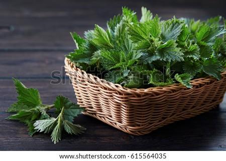 Basket of fresh stinging nettle leaves on wooden table #615564035