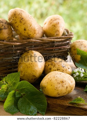 Basket of fresh tasty new potatoes. Selective focus