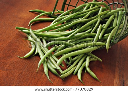 Basket of freshly picked french green beans spilling onto wooden table.  Closeup with shallow dof.