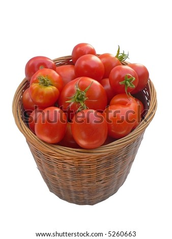 Basket of home-grown tomatoes, viewed from above, isolated on white background.