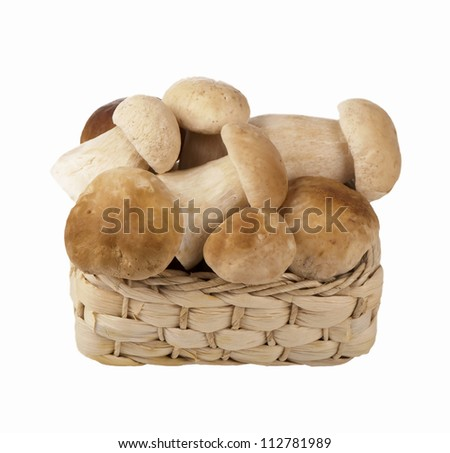 basket of mushrooms on white background