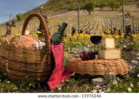 Basket of picnic in vines
