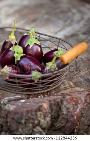Basket of small eggplants