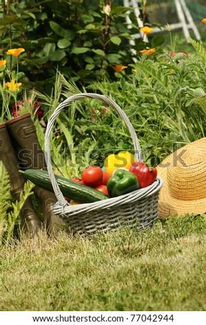 basket of vegetables and in a botanical garden