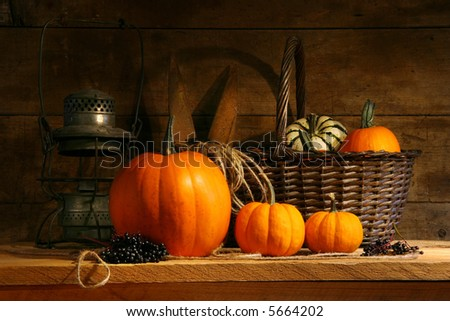 Basket on a shelf with gourds and pumpkins