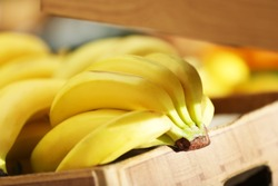 Basket with banana fruit in market
