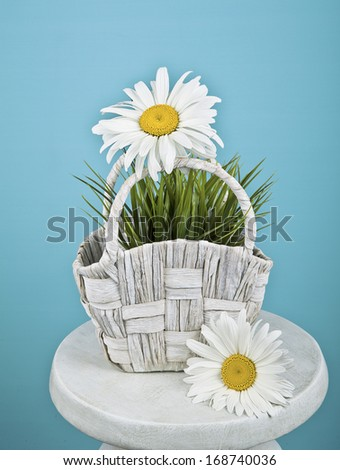 Basket with chamomile