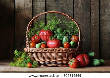 Basket with cucumbers and tomatoes. A still life with cucumbers, tomatoes and fennel. Vegetables in a basket.