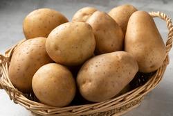 Basket with fresh raw Nicola potatoes close up