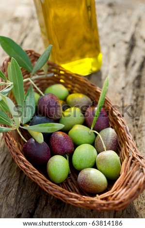 basket with olive branch and oil