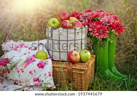 basket with red and green apples in different positions