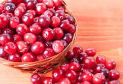 Basket with ripe cranberries on a wooden background
