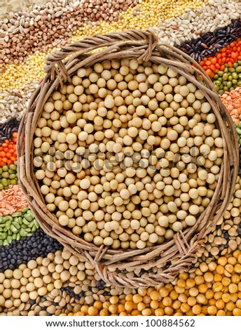 basket with soybeans on the background of the striped rows of lentils, beans, peas, grain, legumes, seed