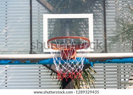 Basketball, hoops, sports scores #1289329435
