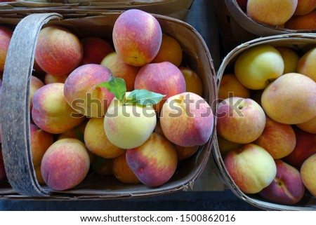 Baskets of Freshly Picked Peaches