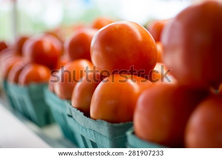 Baskets of tomatoes all in a row at the local farmer\'s market.