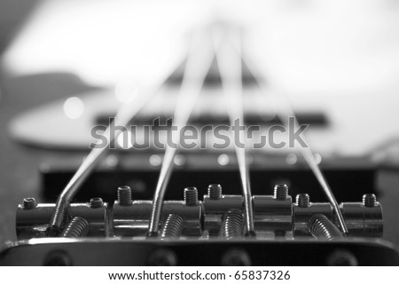 Bass guitar detail