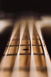 Bass Guitar Vintage Strings Macro