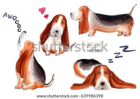 Shutterstock Basset Hound character, dog emotion and feeling, howl, love, sleep, walk.
