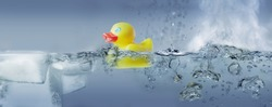 Bath duck in water - solid - liquid - gaseous