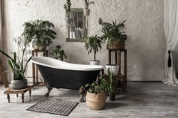 Bathroom in vintage style with elegant interior, contemporary black tub, textile carpet, green plants in flower pots, mirror and copy space on white wall