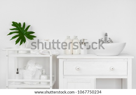 bathroom interior with white...