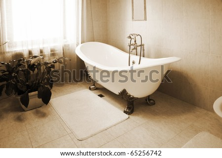 Bathroom with a beautiful bath and an house plant