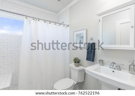 Bathroom with shower curtain.