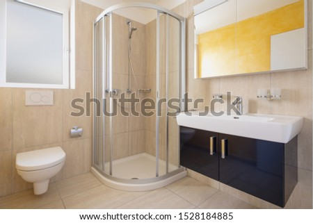 Bathroom with toilet, cabinet with sink and mirror and shower. Nobody inside