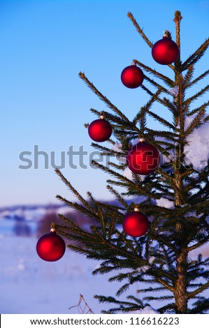 baubles  on a Christmas tree outside in a snowy landscape