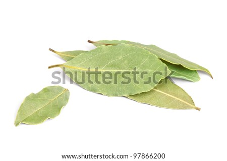 Bay Leaves  isolated on white background. Also called bay laurel or Laurus nobilis. Used as a spice in cuisines and also in medicine.