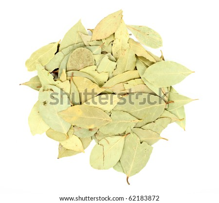 Bay leaves over white background - stock photo