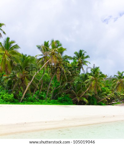 Bay Palms Tranquility - stock photo