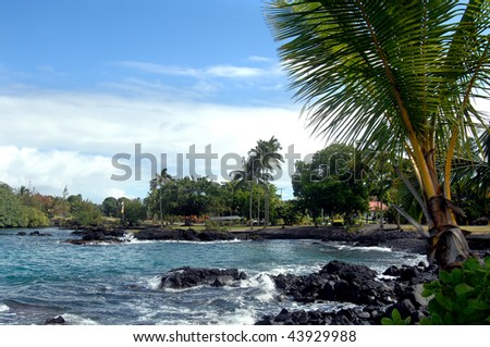 Bay view near Hilo, Hawaii.  Small memorial park flies flag of Japan and the United States.  Palm fronds frame right side of photo.