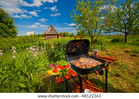 BBQ in the garden on clear summer day