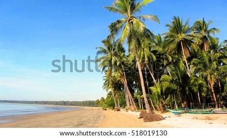 Beach #518019130